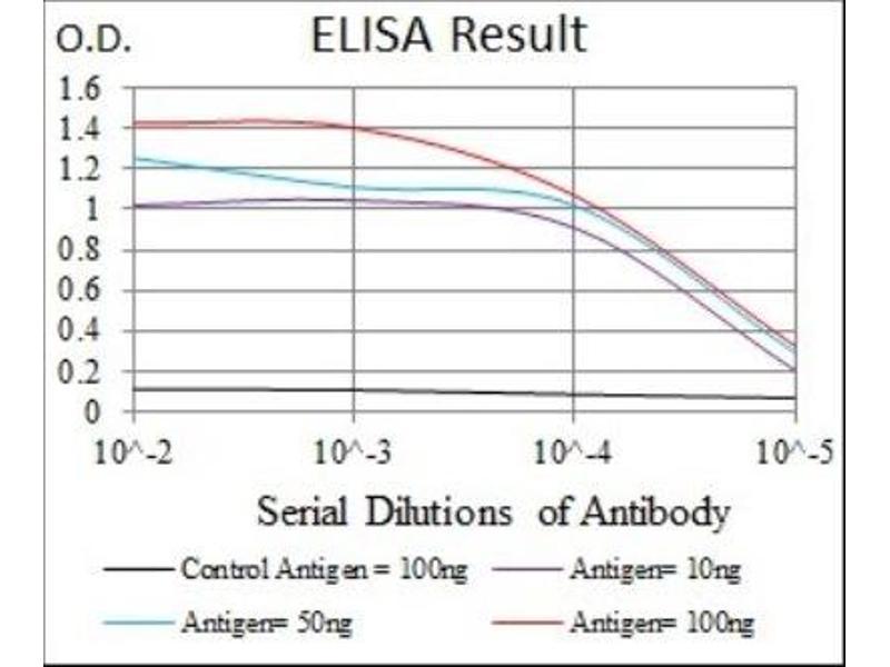 ELISA image for anti-Fibroblast Growth Factor 4 (FGF4) antibody (ABIN4272082)