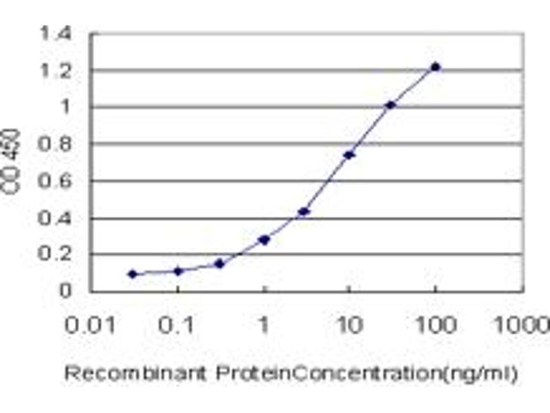 ELISA image for anti-RAR-Related Orphan Receptor B (RORB) (AA 136-225) antibody (ABIN393394)