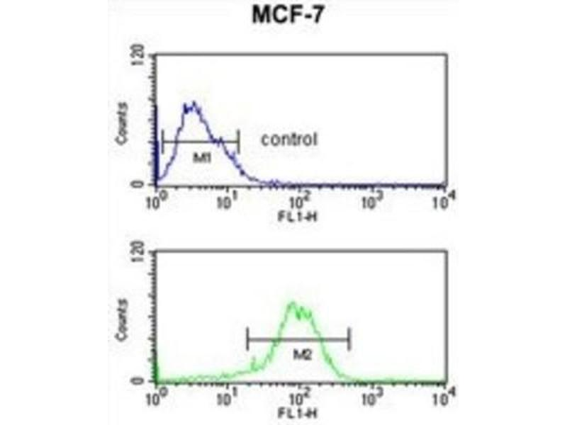 Flow Cytometry (FACS) image for anti-Nuclear Receptor Subfamily 1, Group H, Member 3 (NR1H3) antibody (ABIN3004390)