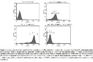 Flow Cytometry (FACS) image for Mitochondrial Permeability Transition Pore Assay Kit (ABIN2015837)