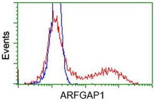 Flow Cytometry (FACS) image for anti-ADP-Ribosylation Factor GTPase Activating Protein 1 (ARFGAP1) antibody (ABIN2716320)