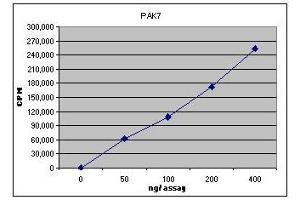 Activity Assay (AcA) image for P21 Protein (Cdc42/Rac)-Activated Kinase 7 (PAK7) (Active) protein (ABIN411934)