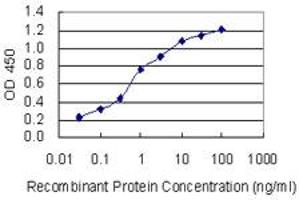 Image no. 2 for anti-Potassium Inwardly-Rectifying Channel, Subfamily J, Member 5 (KCNJ5) (AA 321-419) antibody (ABIN1327053)