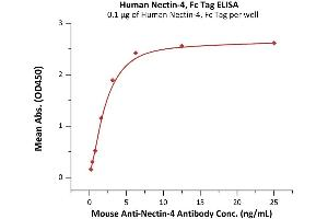 Image no. 1 for Poliovirus Receptor-Related 4 (PVRL4) (AA 32-349) (Active) protein (Fc Tag) (ABIN7013402)