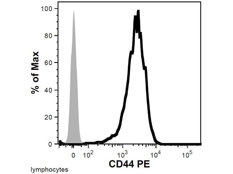 Image no. 1 for anti-CD44 (CD44) antibody (ABIN94121)