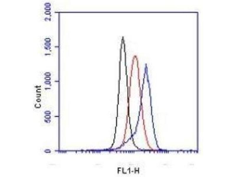 Flow Cytometry (FACS) image for anti-Hypoxia Inducible Factor 1, alpha Subunit (Basic Helix-Loop-Helix Transcription Factor) (HIF1A) (C-Term) antibody (ABIN151900)
