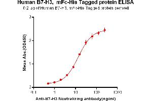 Image no. 2 for CD276 (CD276) protein (mFc Tag,His tag) (ABIN6961085)