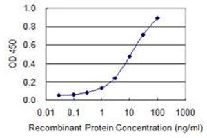 Image no. 2 for anti-Oxysterol Binding Protein-Like 8 (OSBPL8) (AA 244-346) antibody (ABIN530292)