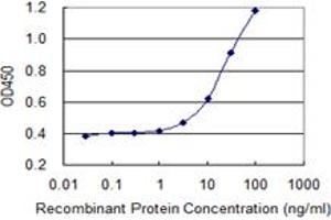 Image no. 2 for anti-Protein Kinase, DNA-Activated, Catalytic Polypeptide (PRKDC) (AA 4019-4128) antibody (ABIN519209)