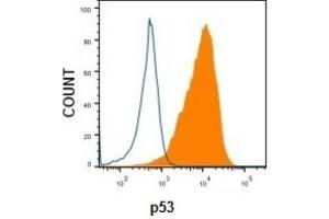 Flow Cytometry (FACS) image for anti-p53 antibody (Tumor Protein P53) (AA 16-25) (ABIN4342783)