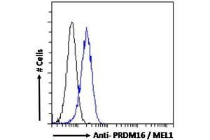 Flow Cytometry (FACS) image for anti-PR Domain Containing 16 (PRDM16) (C-Term) antibody (ABIN249627)