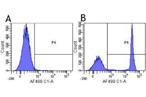 Flow Cytometry (FACS) image for anti-CD4 Molecule (CD4) antibody (ABIN5668248)