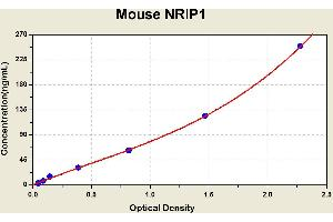 Image no. 1 for Nuclear Receptor Interacting Protein 1 (NRIP1) ELISA Kit (ABIN1116230)