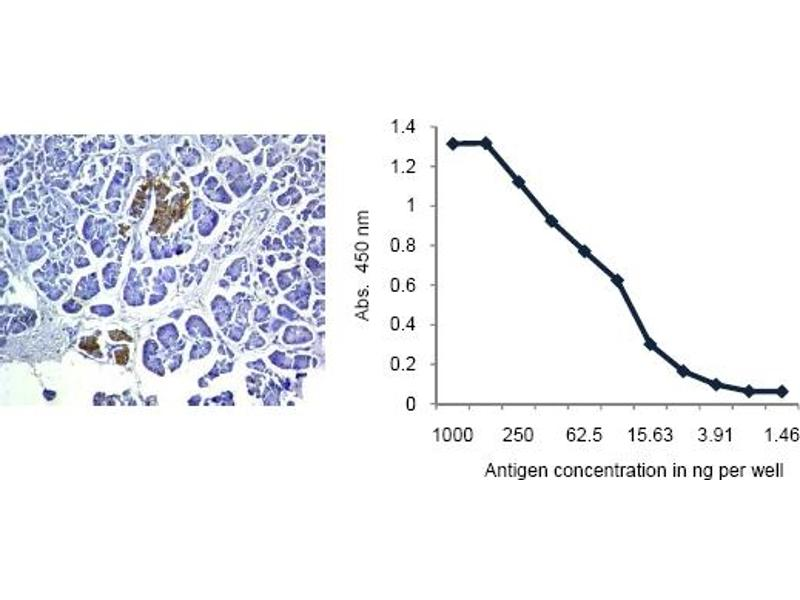 Flow Cytometry (FACS) image for anti-Insulin (INS) antibody (ABIN487416)