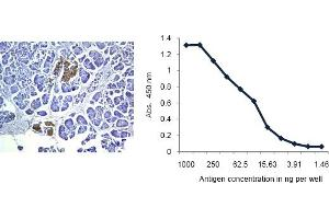 Flow Cytometry (FACS) image for anti-Insulin antibody (INS) (ABIN487416)