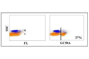 Flow Cytometry (FACS) image for anti-CD4 Molecule (CD4) antibody (ABIN5606091)