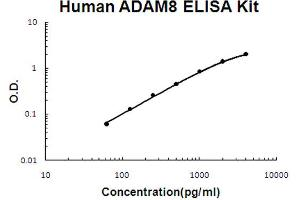Image no. 1 for ADAM Metallopeptidase Domain 8 (ADAM8) ELISA Kit (ABIN6719690)
