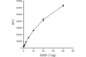 Image no. 1 for SensoLyte® 520 MMP-13 Assay Kit (ABIN1882516)