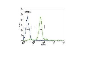 Flow Cytometry (FACS) image for anti-Folate Receptor 1 (Adult) (FOLR1) (AA 33-68), (N-Term) antibody (ABIN654650)