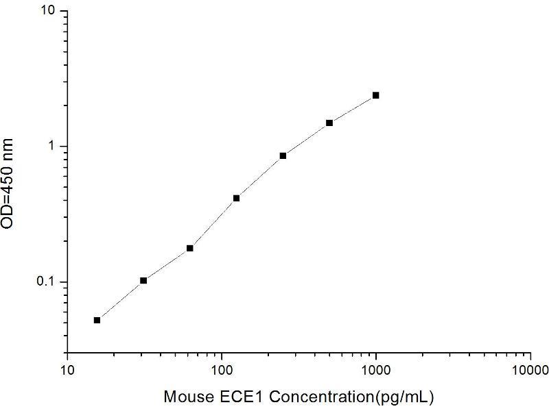 Endothelin-Converting Enzyme 1 (ECE1) ELISA Kit (2)