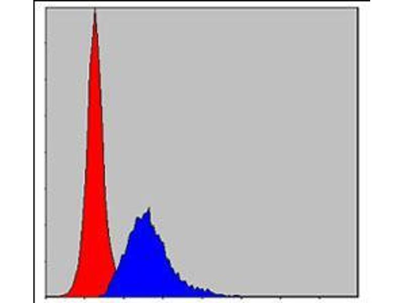 Flow Cytometry (FACS) image for anti-Crk antibody (V-Crk Sarcoma Virus CT10 Oncogene Homolog (Avian)) (ABIN969062)