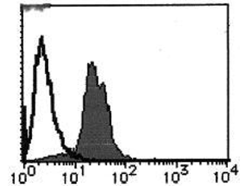 Flow Cytometry (FACS) image for anti-Cyclin D1 (CCND1) antibody (ABIN1106871)