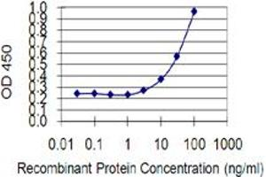 Image no. 1 for anti-GrpE-Like 1, Mitochondrial (GRPEL1) (AA 118-217) antibody (ABIN1327189)
