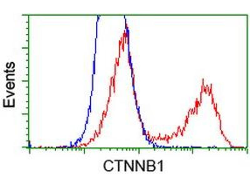 Flow Cytometry (FACS) image for anti-Catenin (Cadherin-Associated Protein), beta 1, 88kDa (CTNNB1) antibody (ABIN2454170)