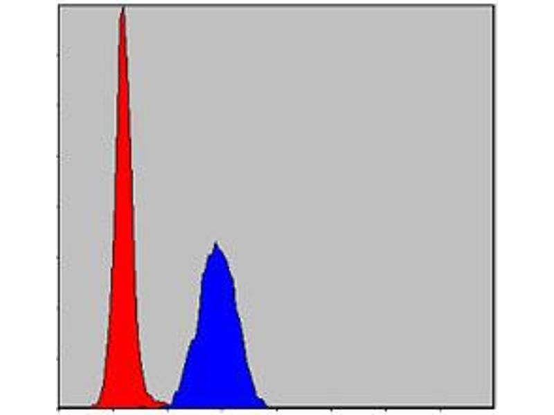 Flow Cytometry (FACS) image for anti-Mitogen-Activated Protein Kinase 3 (MAPK3) antibody (ABIN1108133)