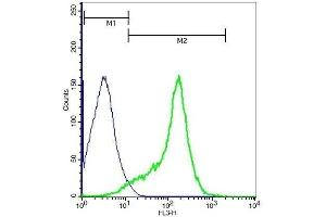 Flow Cytometry (FACS) image for anti-Vascular Cell Adhesion Molecule 1 (VCAM1) (AA 721-739) antibody (ABIN729838)