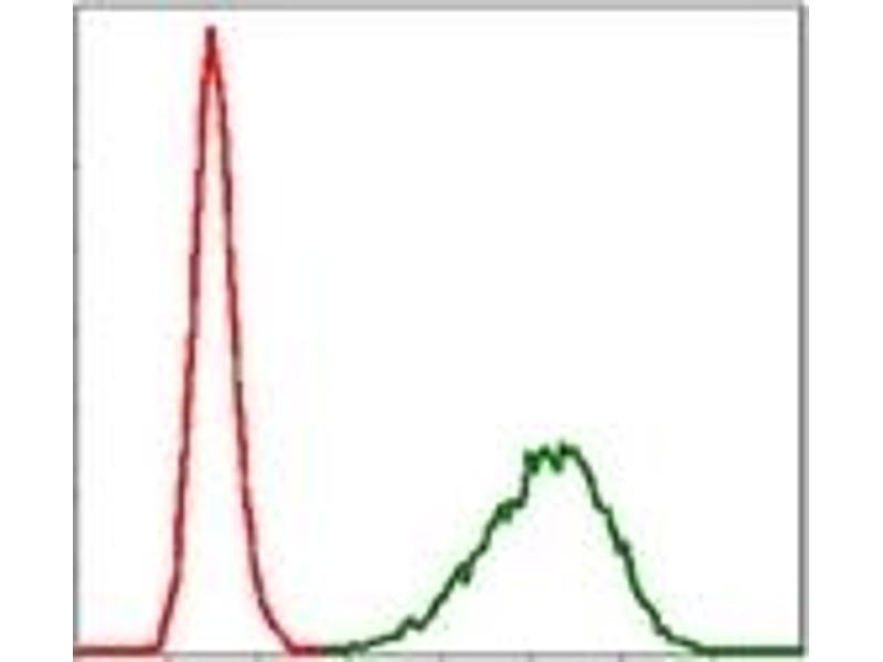 Flow Cytometry (FACS) image for anti-Tubulin, alpha 8 (TUBA8) antibody (ABIN1109365)