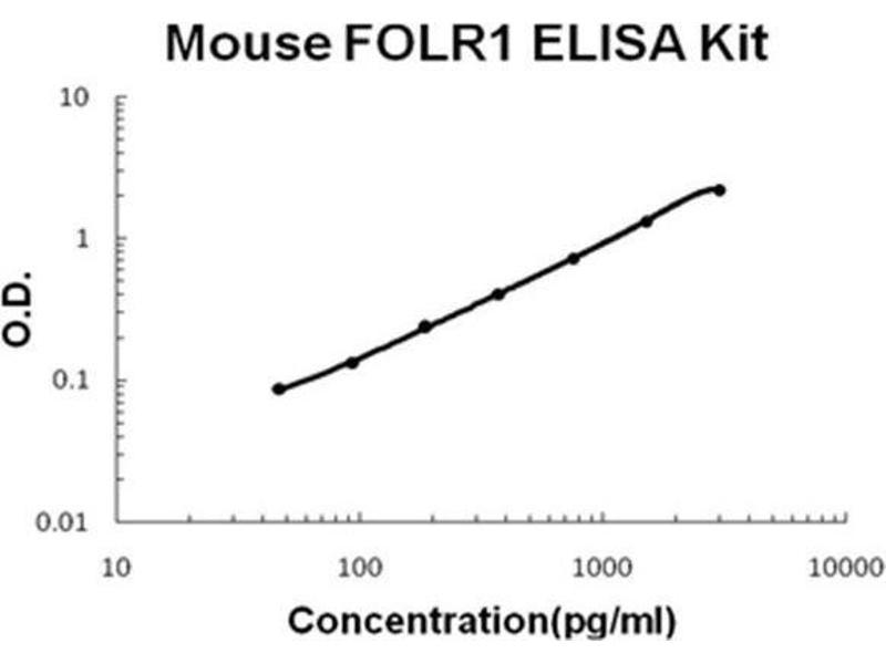 Folate Receptor 1 (Adult) (FOLR1) ELISA Kit