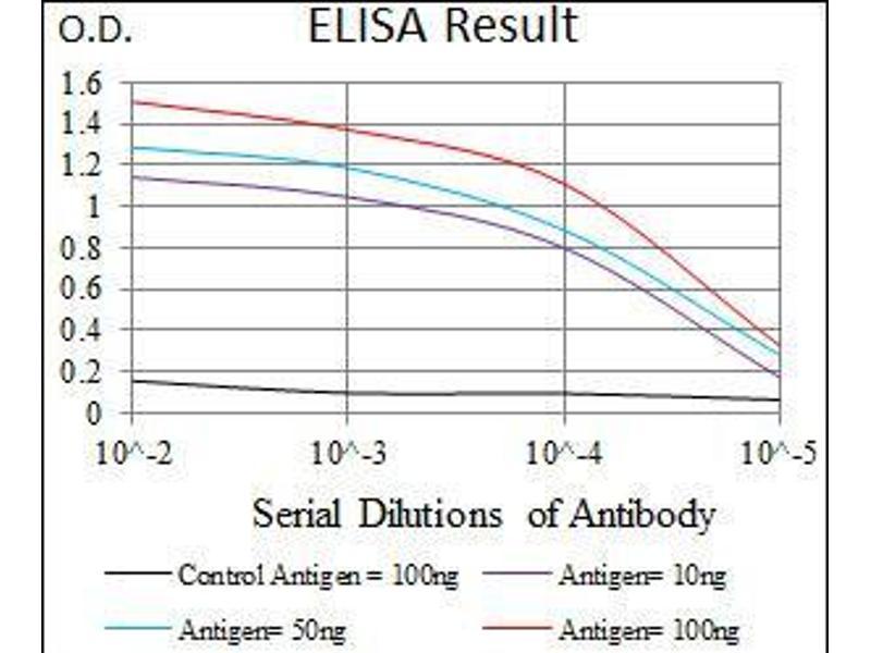 ELISA image for anti-TWIST1 antibody (Twist Homolog 1 (Drosophila)) (AA 9-74) (ABIN1098133)
