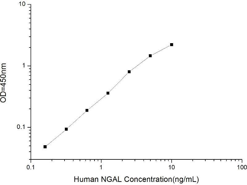 Image no. 2 for Lipocalin 2 (LCN2) ELISA Kit (ABIN1116189)