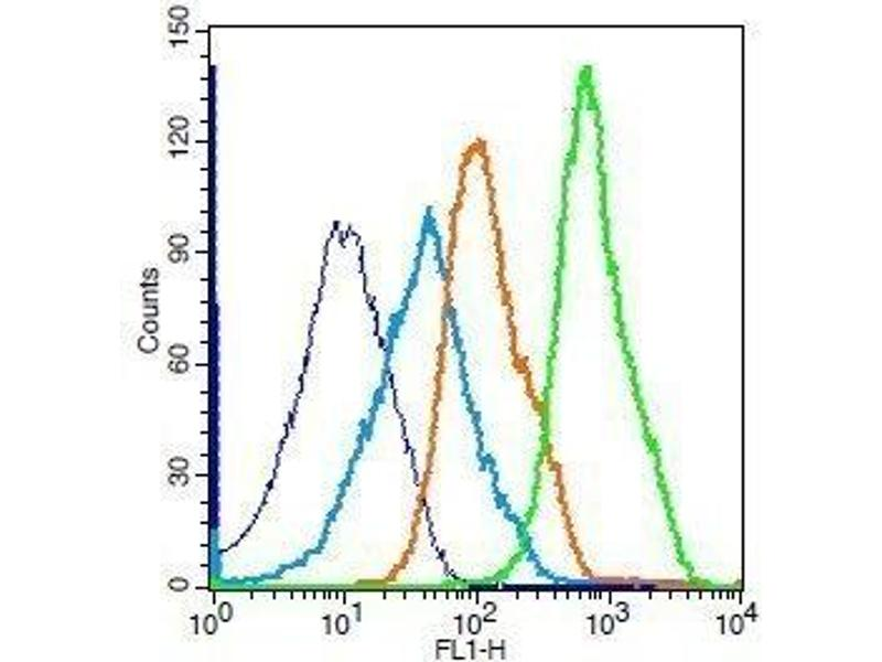 Flow Cytometry (FACS) image for anti-Nuclear Factor-KB P65 (NFkBP65) (AA 50-100) antibody (ABIN668961)