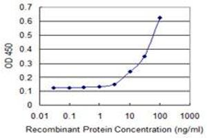 Image no. 1 for anti-Fanconi Anemia, Complementation Group B (FANCB) (AA 750-858) antibody (ABIN515516)