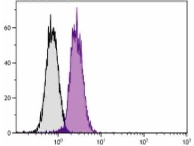 Flow Cytometry (FACS) image for anti-BCL2-Like 1 (BCL2L1) antibody (ABIN440454)