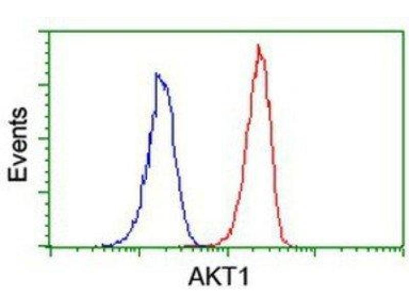Flow Cytometry (FACS) image for anti-AKT antibody (V-Akt Murine Thymoma Viral Oncogene Homolog 1) (ABIN4279004)