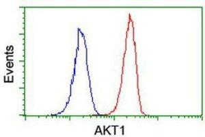 Flow Cytometry (FACS) image for anti-V-Akt Murine Thymoma Viral Oncogene Homolog 1 (AKT1) antibody (ABIN4279004)