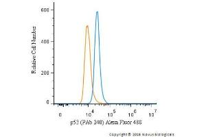 Flow Cytometry (FACS) image for anti-Tumor Protein P53 (TP53) (AA 14-389) antibody (ABIN152249)