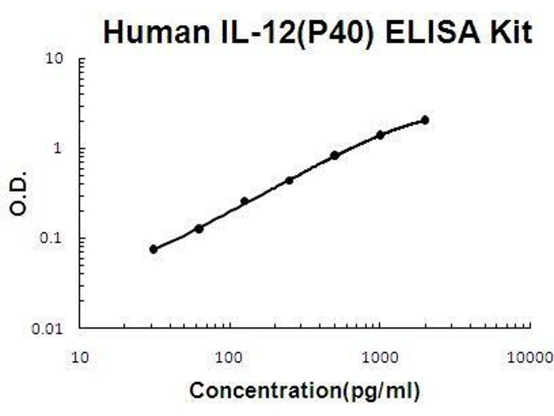 Interleukin 12b (IL12B) ELISA Kit