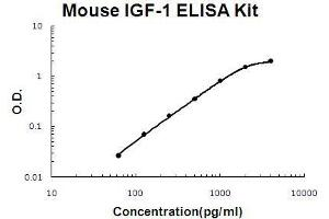 Image no. 1 for Insulin-Like Growth Factor 1 (IGF1) ELISA Kit (ABIN411286)