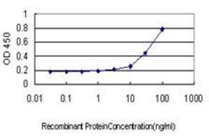 Image no. 1 for anti-Barrier To Autointegration Factor 1 (BANF1) (AA 1-89) antibody (ABIN563810)