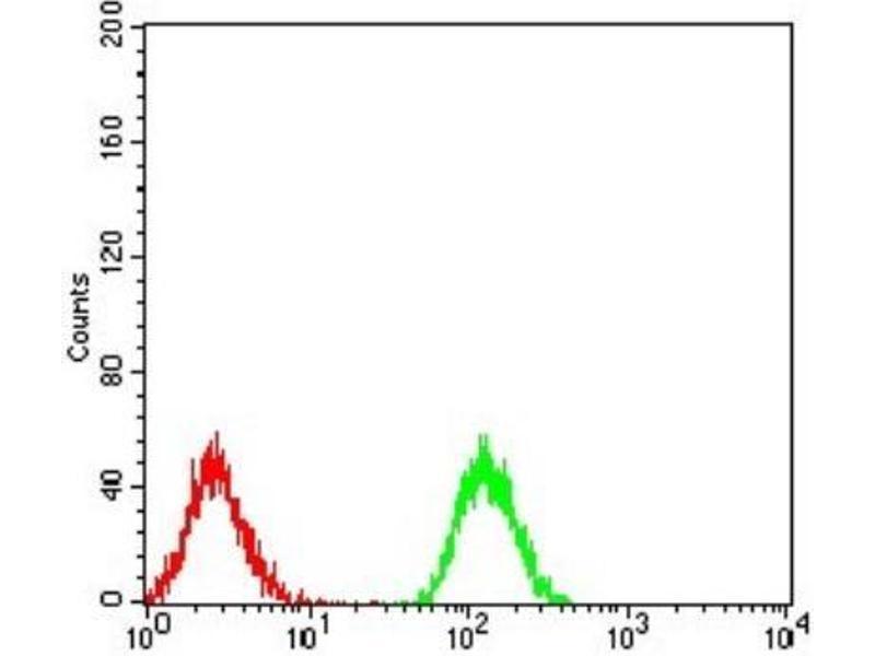 Flow Cytometry (FACS) image for anti-phospholipase C, gamma 1 (PLCG1) antibody (ABIN4346129)