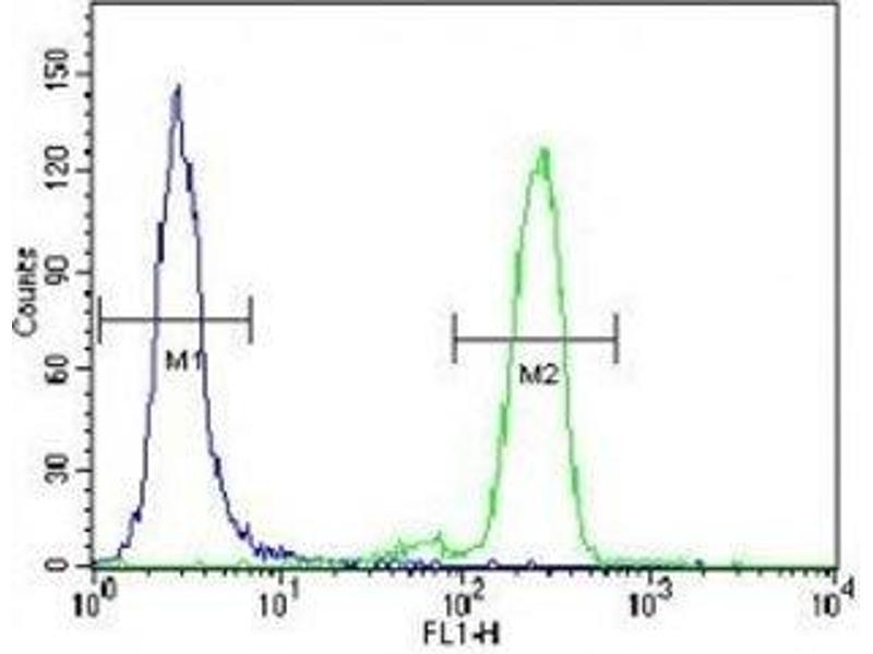 Flow Cytometry (FACS) image for anti-PML antibody (Promyelocytic Leukemia) (AA 470-499) (ABIN3032330)