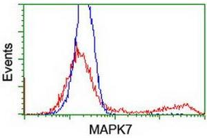 Flow Cytometry (FACS) image for anti-Mitogen-Activated Protein Kinase 7 (MAPK7) antibody (ABIN2454050)