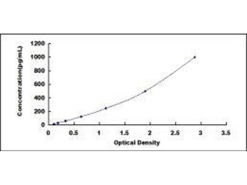 Carboxypeptidase N Subunit 1 (CPN1) ELISA Kit