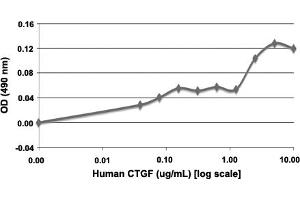 Image no. 2 for Connective Tissue Growth Factor (CTGF) protein (ABIN5571264)