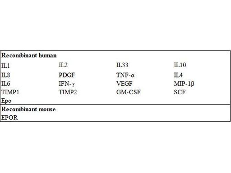Erythropoietin Receptor (EPOR) ELISA Kit (2)