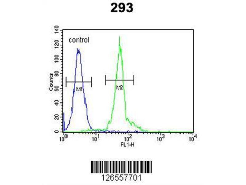 Flow Cytometry (FACS) image for anti-Intraflagellar Transport 172 Homolog (Chlamydomonas) (IFT172) (AA 28-57), (N-Term) antibody (ABIN651581)